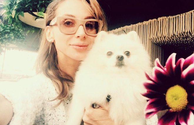 Собака-суперзвезда: когда ты шпиц и с тобой фотографируется LOBODA (фото)