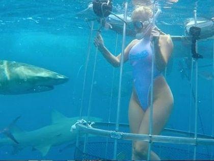 СРОЧНО!!! Известную актрису укусила акула! Просто во время съемок ! Шокирующее видео!